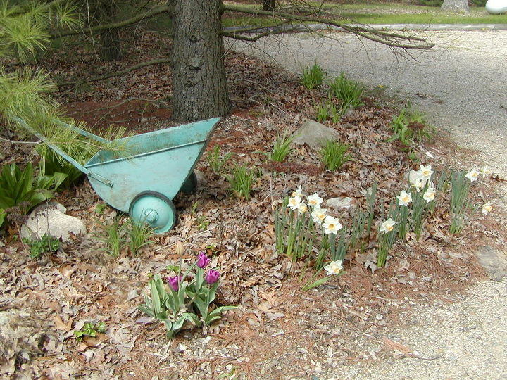 This push cart looks nearly new and was all aqua in our spring garden photograph. This photo was taken in front of the former White Oak Studio & Gallery.