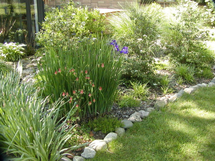 Garden bed mulched with bark chips to hold in water with stones around it to hold in soil and mulch.