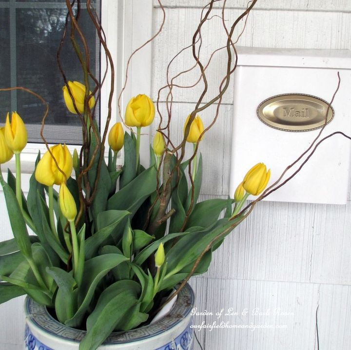 Add some curly willow to a pot of tulips and you have instant height and interest.