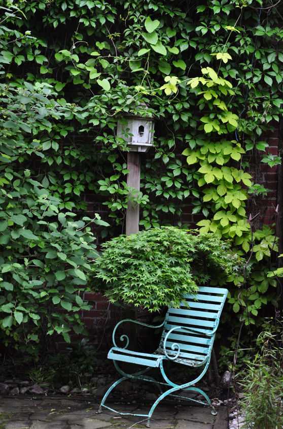 This has nothing to do with a birdbath planter, but I can't resist showing it because it is a pretty area of the garden in Toronto that has the birdbath planter.