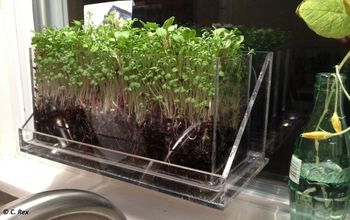 Teach Your Kids To Grow What They Eat - Sustainable Window Farming