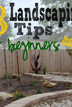 how to landscape in 8 simple steps, gardening, landscape