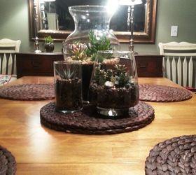 Succulent Terrarium Centerpiece Hometalk