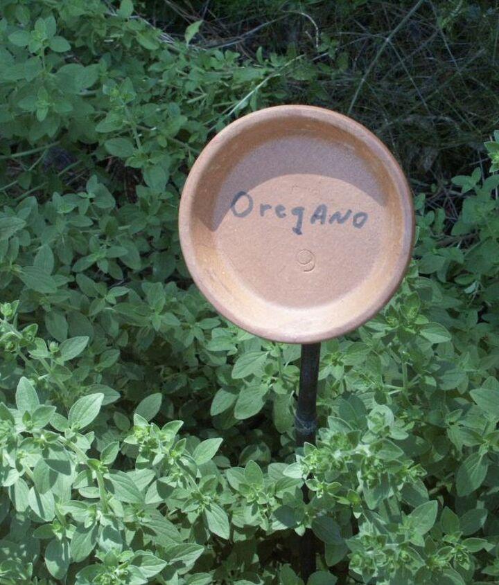 pot saucer on stake