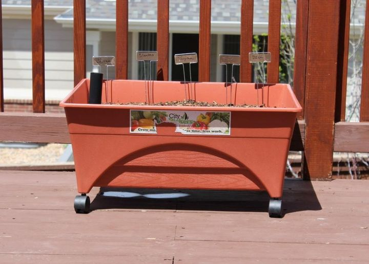 container herb container, container gardening, flowers, gardening