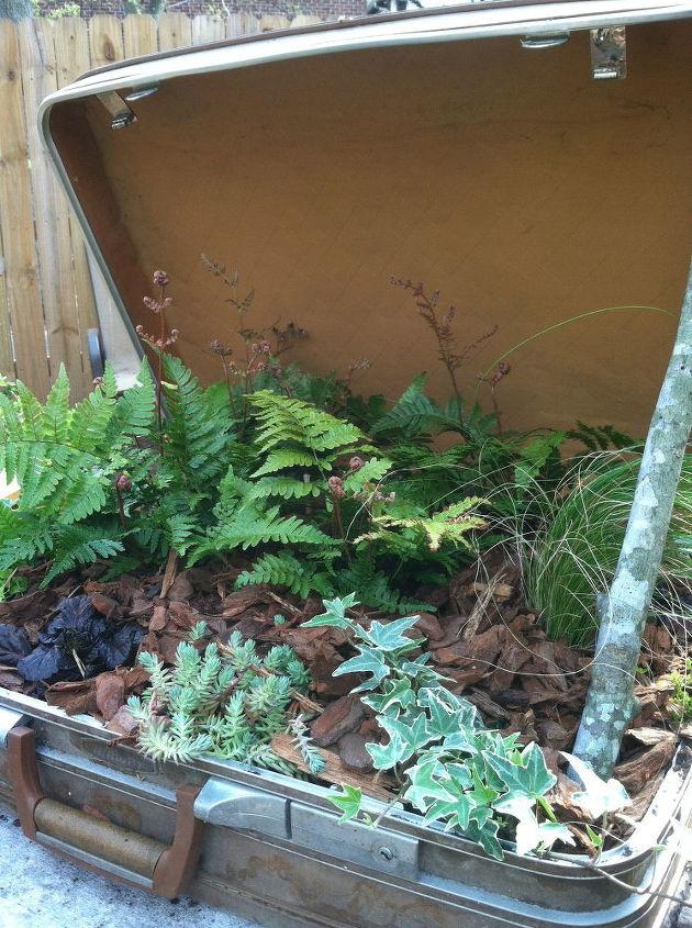 suitcase planter, flowers, gardening, repurposing upcycling