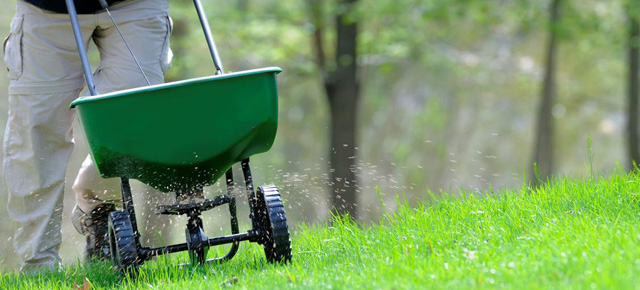 seven habits of homeowners with perfectly manicured lawns, cleaning tips, gardening, landscape, lawn care