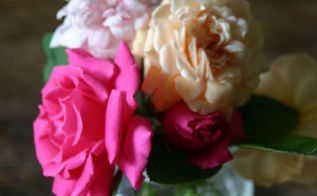 a fragrant spring bouquet from my garden, gardening