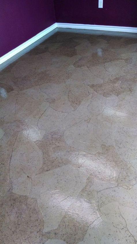 dog salon paper floor, flooring