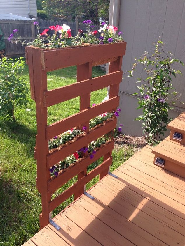 pallet privacy living wall, decks, diy, gardening, how to, pallet,