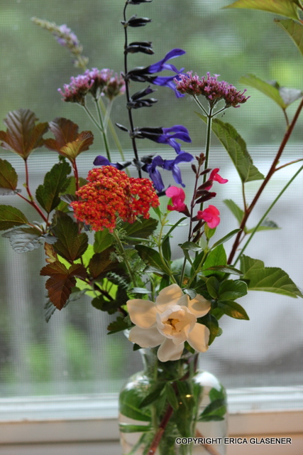 a spring bouquet from my garden gathered yesterday between welcome rain showers, flowers, gardening, spring flowers some early summer types too