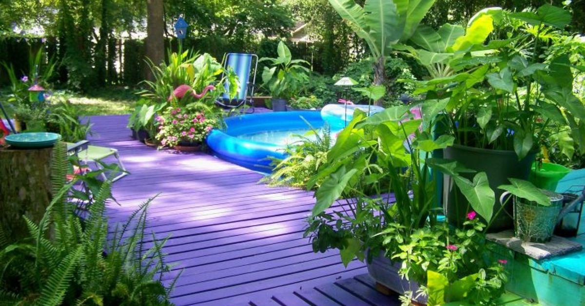 Purple Paradise Hometalk