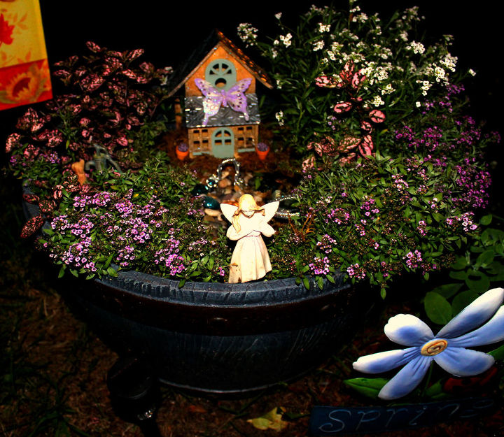 bloomed fairy garden!