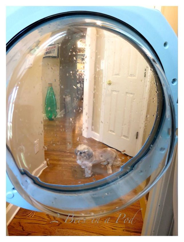 how to clean washing machine sanitizing, appliances, cleaning tips