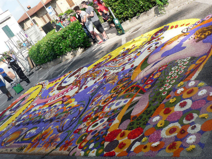 "One of the large floral carpets of Spello Italy's ""infiorata."""