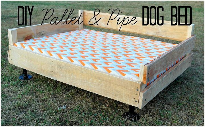 Pallet Pipe Dog Bed Platform Diy Pets Animals Repurposing Upcycling