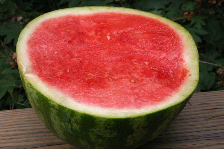 how are seedless watermelons grown, flowers, gardening