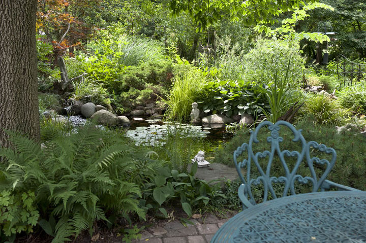 water gardens, outdoor living, ponds water features, Lush plantings near a pond create a tropical outdoor space