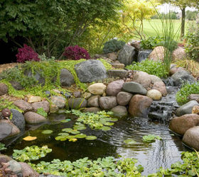 Small Water Gardens, Outdoor Living, Patio, Ponds Water Features, An Unused  Corner