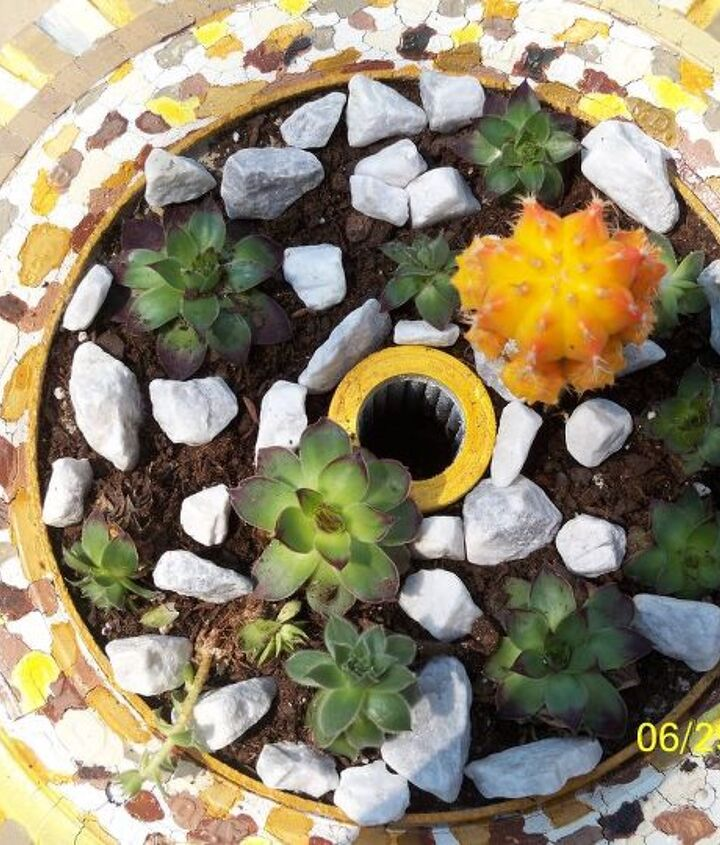 the leopart tire planter, gardening, repurposing upcycling, Dress it up with some pretty white granite gravel