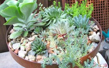 succulent gardening, flowers, gardening, repurposing upcycling, succulents, Now