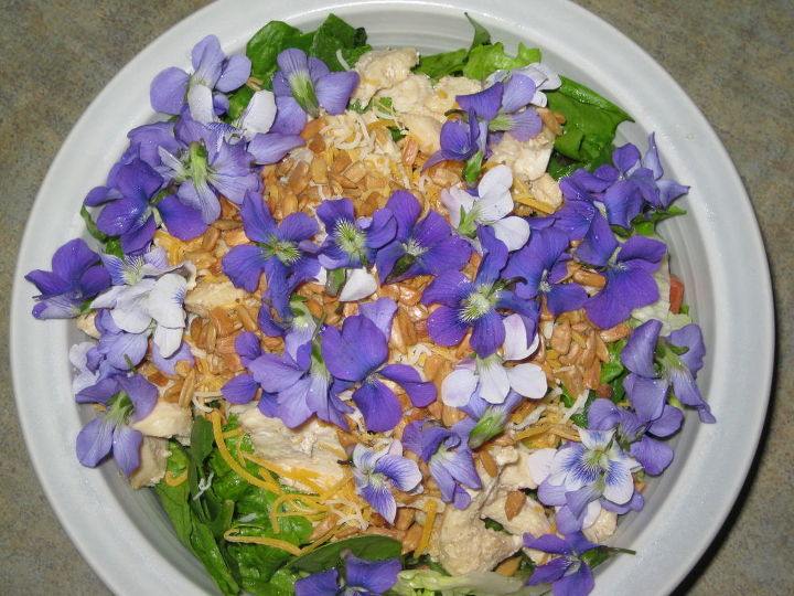 gardening and eating, flowers, gardening, Sweet violets for dinner
