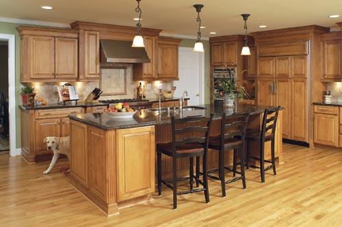 boring kitchen gets an upscale renovation with family in mind, electrical, home improvement, kitchen backsplash, kitchen design, kitchen island, Macon the dog checks out the newly remodeled kitchen You can see more of AK s work
