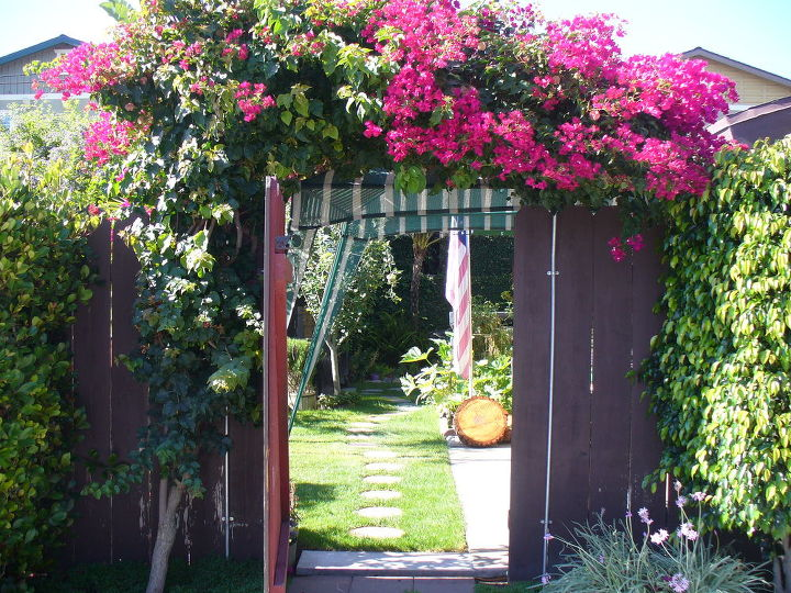 the gate to my backyard, gardening, outdoor living