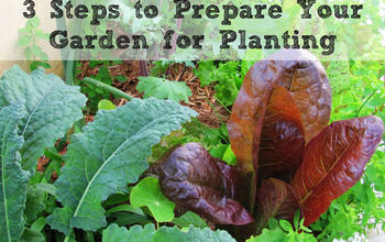 3 Steps to Prepare Your Garden for Planting