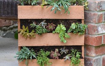 Cedar Succulent Pallet Planter
