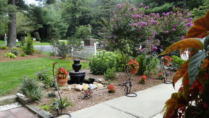 flowers and patio, flowers, gardening, outdoor living, patio, My Patio