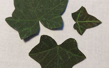 How to Make an Ivy Leaf Video