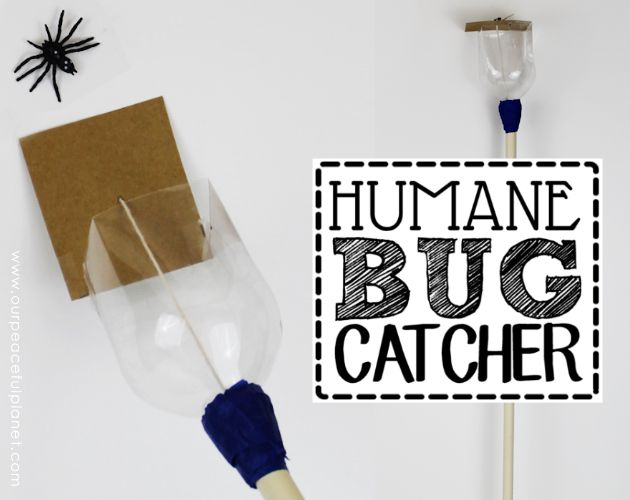 how to make a humane bug catcher, crafts, how to, pest control, repurposing upcycling
