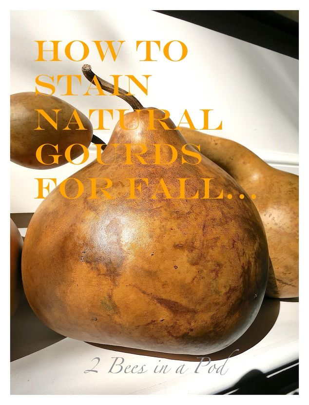 How to stain natural gourds for fall hometalk for Decor questions