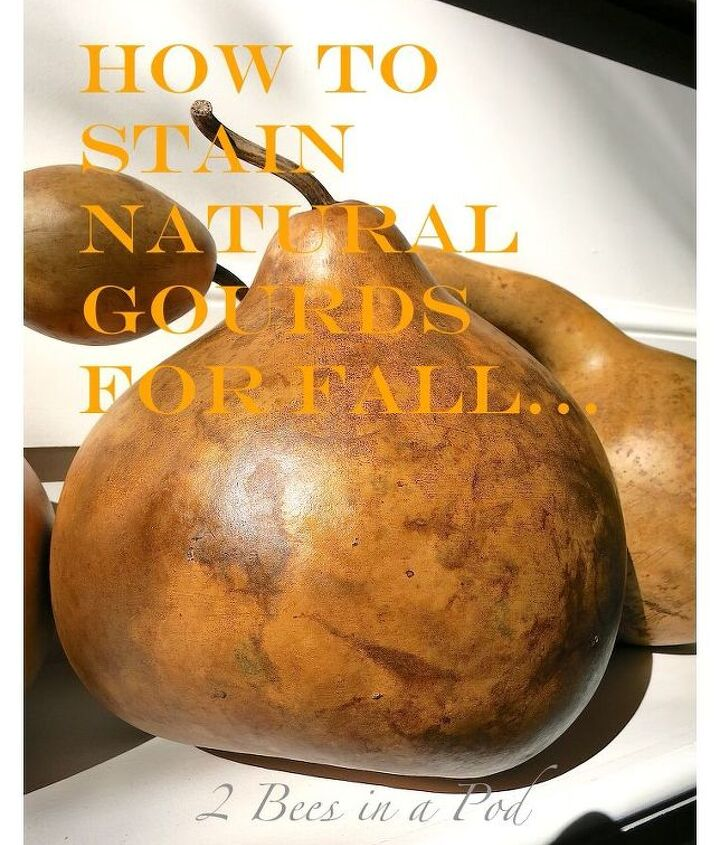 how to stain natural gourds fall decor