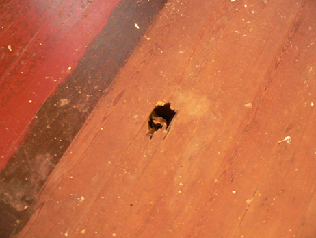 How To Fix Holes In These Wood Floors Hometalk