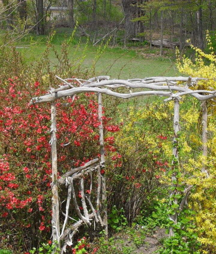 Secret raspberry garden beyond.