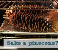 get rid of insects in your pinecones before you decorate with them, crafts, Bake before you decorate