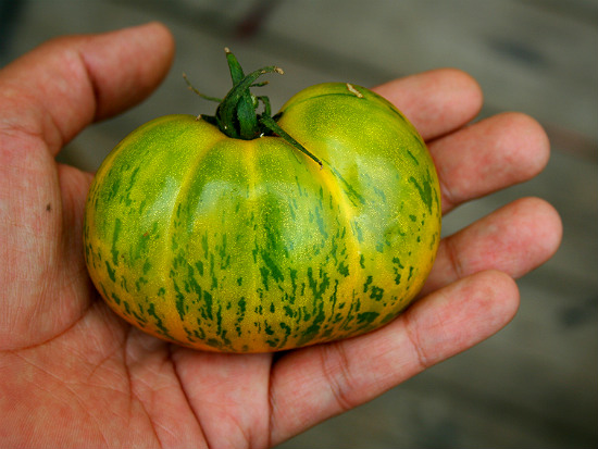 everything you need to know about saving heirloom seeds, gardening
