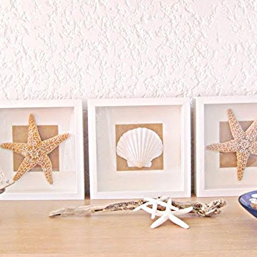 tables diy shell and starfish, crafts, home decor
