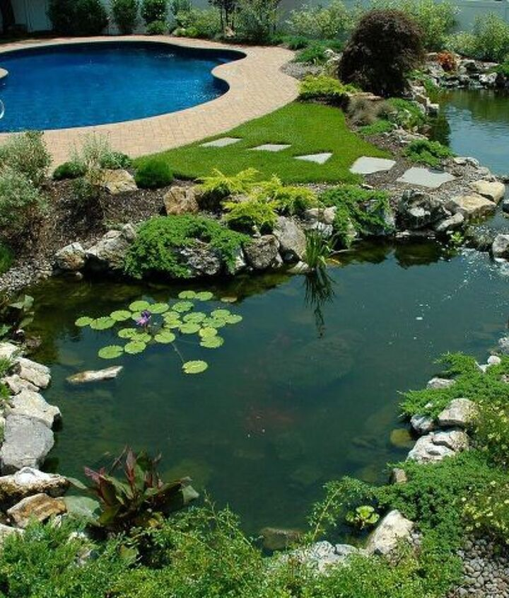 Lower pond and poo in the background. This pond project won an International award from the Association of Pool and Spa Professionals (APSP) Silver medal for waterfeatures. www.deckandpatio.com