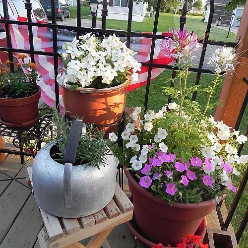 Junk Garden Decor Gardening Home Groupings