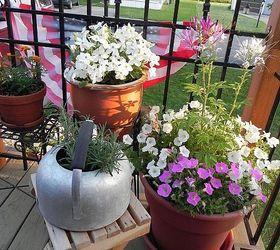 Junk Garden Decor, Gardening, Home Decor, Groupings