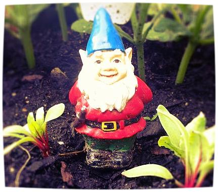 6. Whimsy -  Every garden must have a gnome but consider adding toys like small animals and action figures.