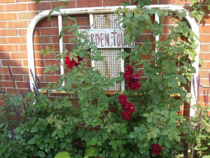 This is an old iron bed that I'm using as a trellis for our roses.