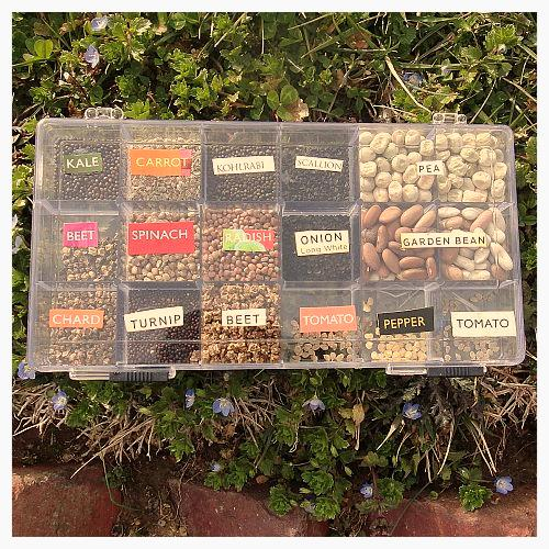 Bead Box Seed Library