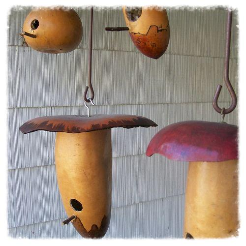 Gourd birdhouses I hang from the covered porch each spring.