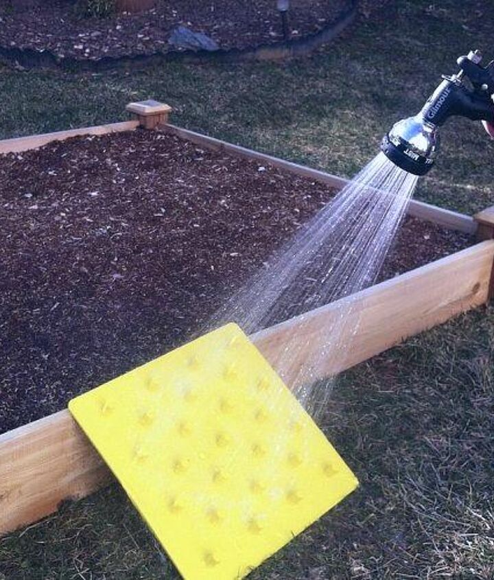 Water your freshly planted bed and hose down the Stamp.