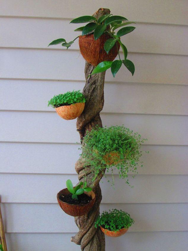 vine planter, gardening, Vine Planter