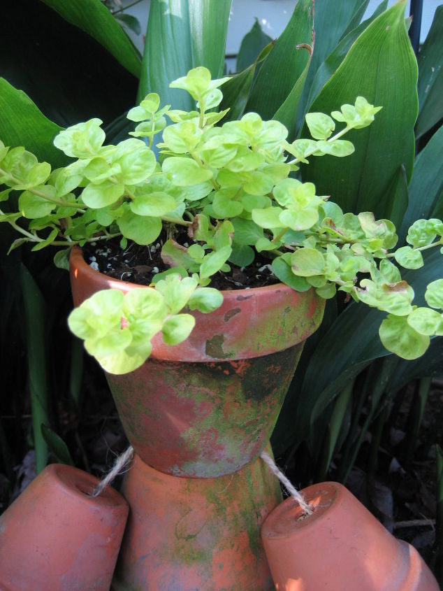 a fun and whimsical flower pot man for your garden, crafts, flowers, gardening, Top him off with his head another larger pot filled with a fun creeping plant such as Creeping Jenny to serve as hair